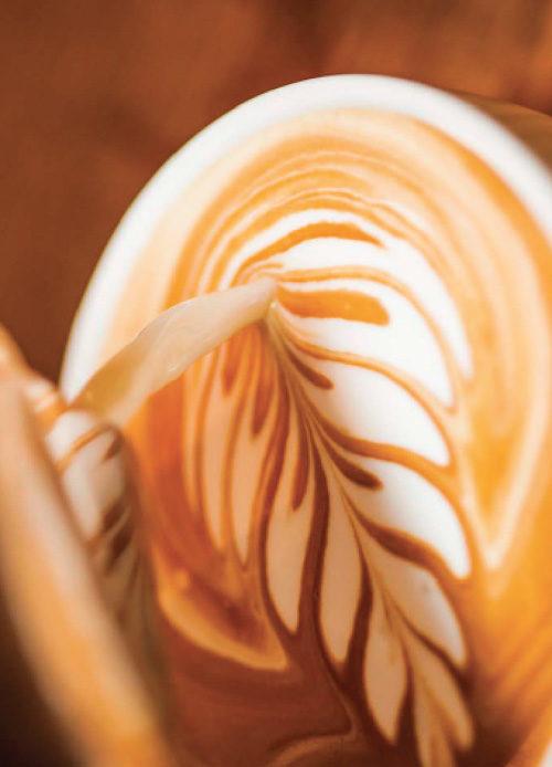 Latte Art Kurs Bild Farn